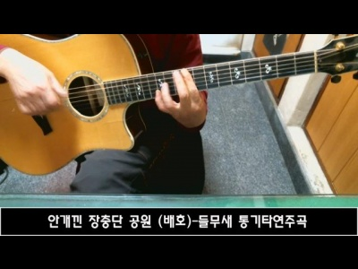 안개낀 장충단 공원 (배호)-들무새 통기타연주곡