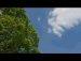 422공원일기 쾌청 꽃구름